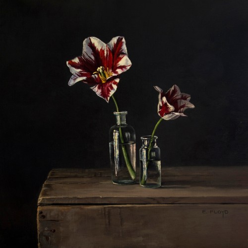"""Rembrandt Tulips"" 20x20, oil on linen, ID# 16641"